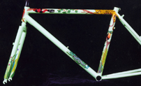 rainforest themed custom bicycle art